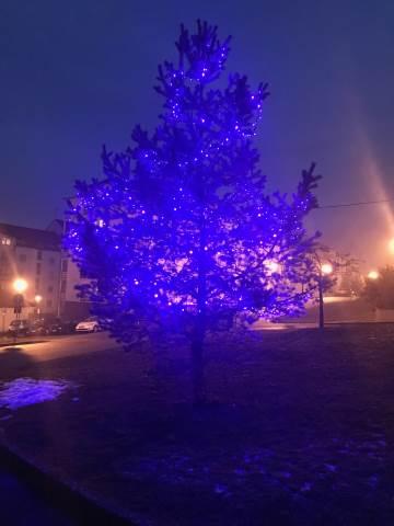 Rozsvícení vánočního stromečku